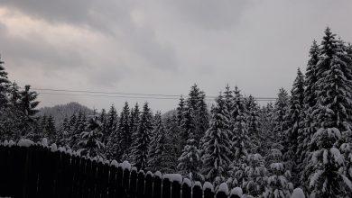 Photo of Fără schi în Sibiu! Cine are voie să urce pe pârtie, la Păltiniș