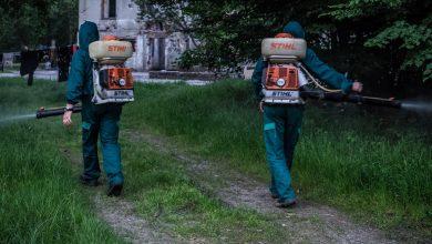 Photo of Dezinsecție împotriva căpușelor și țânțarilor, în parcuri, spații verzi, Cimitirul Municipal și Grădina Zoologică