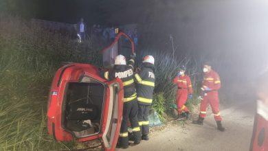 Photo of Cal mort, după ce a fost lovit de mașină pe DJ 106, la Cornățel