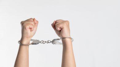 Photo of Jinar cercetat penal și reținut, după ce ar fi furat foarfece pentru tunsul animalelor