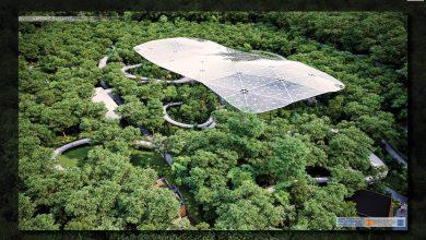 Photo of Pădurea Dumbrava va avea un parc tematic, pe o suprafață de 181.000 mp