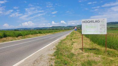 Photo of Tuberoza din Hoghilag, prima floare din România protejată la nivel european