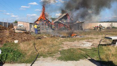 Photo of UPDATE| Incendiu în zona Seviș. Două adăposturi de animale, în flăcări