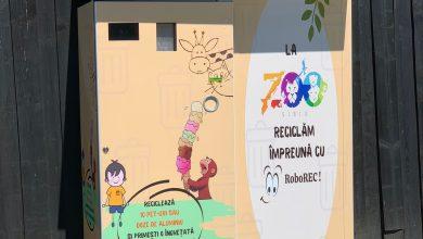 Photo of Reciclezi și câștigi o înghețată!