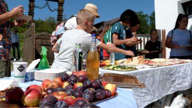 """Photo of """"Masă câmpenească"""" la Bradu: drumeții, mâncăruri tradiționale și un peisaj de basm"""